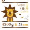 Namensbild zur Geburt – Sternzeichen Löwe – Junge