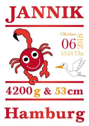 Namensbild zur Geburt – Sternzeichen Skorpion – Junge