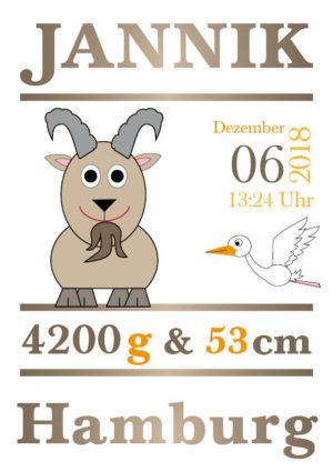 Namensbild zur Geburt – Sternzeichen Steinbock – Junge
